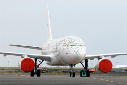 banshee02さんが、羽田空港で撮影したプリヴァジェット A319-115CJの航空フォト(飛行機 写真・画像)