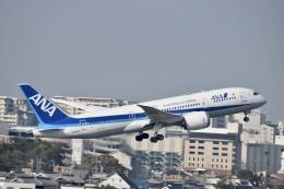 東亜国内航空さんが、伊丹空港で撮影した全日空 787-8 Dreamlinerの航空フォト(飛行機 写真・画像)