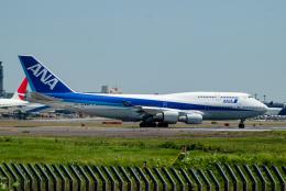 リゾッチャ(紫)さんが、成田国際空港で撮影した全日空 747-481の航空フォト(飛行機 写真・画像)