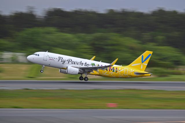 Souma2005さんが、成田国際空港で撮影したピーチ A320-214の航空フォト(飛行機 写真・画像)