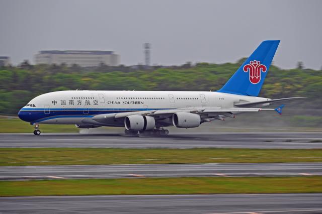 Souma2005さんが、成田国際空港で撮影した中国南方航空 A380-841の航空フォト(飛行機 写真・画像)
