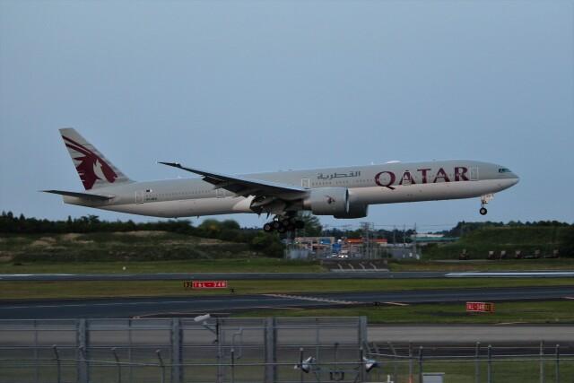 OMAさんが、成田国際空港で撮影したカタール航空 777-3DZ/ERの航空フォト(飛行機 写真・画像)