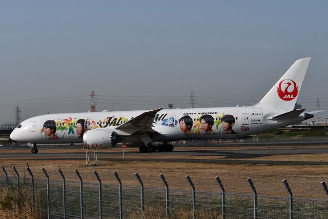 blue-r_k5さんが、伊丹空港で撮影した日本航空 787-9の航空フォト(飛行機 写真・画像)