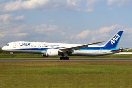 セブンさんが、伊丹空港で撮影した全日空 787-9の航空フォト(飛行機 写真・画像)
