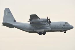 デルタおA330さんが、厚木飛行場で撮影したアメリカ海兵隊 KC-130J Herculesの航空フォト(飛行機 写真・画像)
