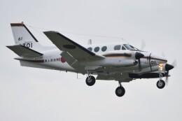 デルタおA330さんが、厚木飛行場で撮影した海上自衛隊 LC-90 King Air (C90)の航空フォト(飛行機 写真・画像)