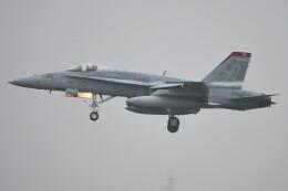 デルタおA330さんが、横田基地で撮影したアメリカ海兵隊 F/A-18C Hornetの航空フォト(飛行機 写真・画像)
