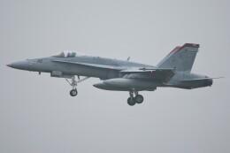 デルタおA330さんが、厚木飛行場で撮影したアメリカ海兵隊 F/A-18C Hornetの航空フォト(飛行機 写真・画像)