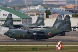 camelliaさんが、名古屋飛行場で撮影した航空自衛隊 C-130H Herculesの航空フォト(飛行機 写真・画像)