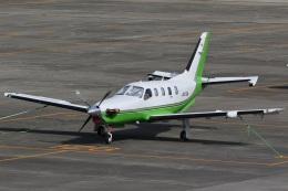 camelliaさんが、名古屋飛行場で撮影した日本法人所有 TBM-700の航空フォト(飛行機 写真・画像)