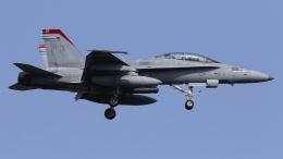 多摩川崎2Kさんが、厚木飛行場で撮影したアメリカ海兵隊 F/A-18D Hornetの航空フォト(飛行機 写真・画像)