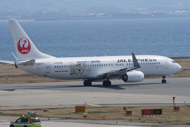 神宮寺ももさんが、関西国際空港で撮影した日本航空 737-846の航空フォト(飛行機 写真・画像)