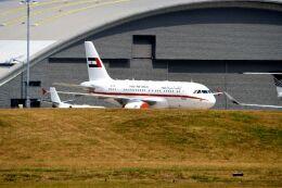 まいけるさんが、ファンボロー空港で撮影したシャルージャ・ルーラーズ・ロイヤル・フライト A319-133X CJの航空フォト(飛行機 写真・画像)