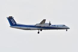 れぐぽよさんが、小松空港で撮影したANAウイングス DHC-8-402Q Dash 8の航空フォト(飛行機 写真・画像)