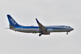 れぐぽよさんが、小松空港で撮影した全日空 737-881の航空フォト(飛行機 写真・画像)