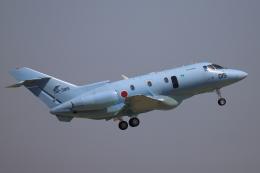 赤ちんさんが、茨城空港で撮影した航空自衛隊 U-125A(Hawker 800)の航空フォト(飛行機 写真・画像)