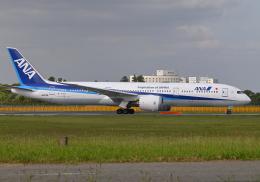 雲霧さんが、成田国際空港で撮影した全日空 787-9の航空フォト(飛行機 写真・画像)