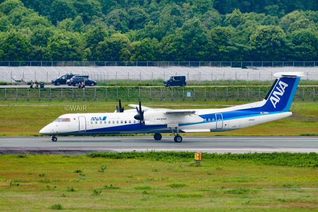 WAiRさんが、熊本空港で撮影したANAウイングス DHC-8-402Q Dash 8の航空フォト(飛行機 写真・画像)