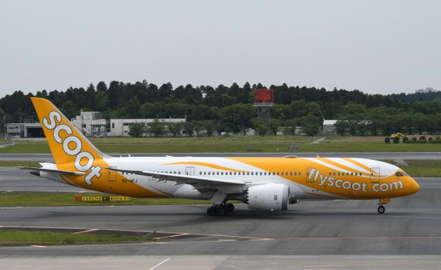 チャーリーマイクさんが、成田国際空港で撮影したスクート 787-8 Dreamlinerの航空フォト(飛行機 写真・画像)
