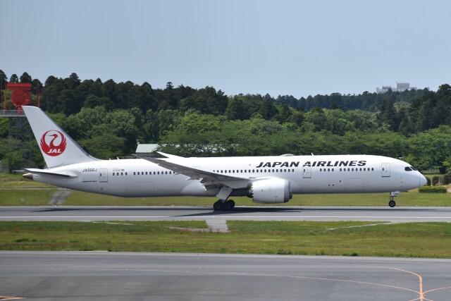 PIRORINGさんが、成田国際空港で撮影した日本航空 787-9の航空フォト(飛行機 写真・画像)