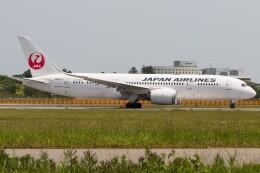 walker2000さんが、成田国際空港で撮影した日本航空 787-8 Dreamlinerの航空フォト(飛行機 写真・画像)