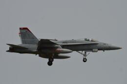 350JMさんが、厚木飛行場で撮影したアメリカ海兵隊 F/A-18C Hornetの航空フォト(飛行機 写真・画像)