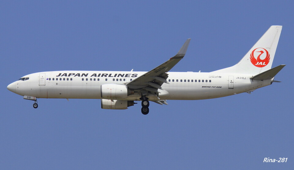 RINA-281さんの日本航空 Boeing 737-800 (JA310J) 航空フォト