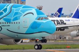 おっしーさんが、成田国際空港で撮影した全日空 A380-841の航空フォト(飛行機 写真・画像)