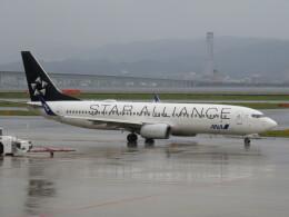 LOVE767さんが、関西国際空港で撮影した全日空 737-881の航空フォト(飛行機 写真・画像)