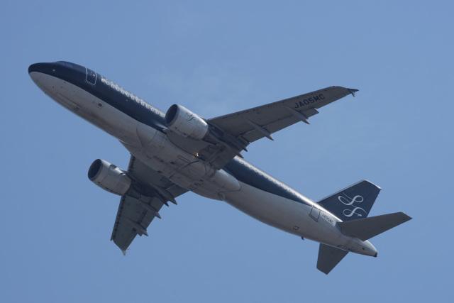 神宮寺ももさんが、関西国際空港で撮影したスターフライヤー A320-214の航空フォト(飛行機 写真・画像)