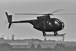 チャーリーマイクさんが、八尾空港で撮影した陸上自衛隊 OH-6Jの航空フォト(飛行機 写真・画像)