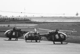 チャーリーマイクさんが、熊本空港で撮影した陸上自衛隊 OH-6Jの航空フォト(飛行機 写真・画像)