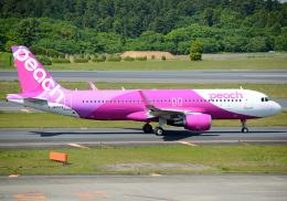 NINEJETSさんが、成田国際空港で撮影したピーチ A320-214の航空フォト(飛行機 写真・画像)