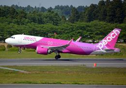NINEJETSさんが、成田国際空港で撮影したピーチ A320-251Nの航空フォト(飛行機 写真・画像)