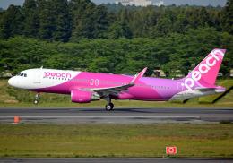 航空フォト:JA14VA ピーチ A320