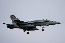 Takeshi90ssさんが、厚木飛行場で撮影したアメリカ海軍 F/A-18C Hornetの航空フォト(飛行機 写真・画像)