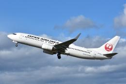 航空フォト:JA309J 日本航空 737-800