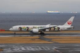 anyongさんが、羽田空港で撮影した日本航空 787-9の航空フォト(飛行機 写真・画像)