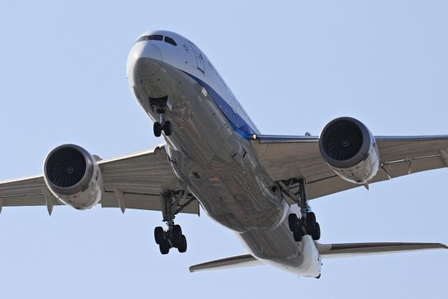 anyongさんが、羽田空港で撮影した全日空 787-8 Dreamlinerの航空フォト(飛行機 写真・画像)