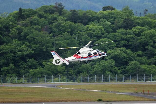 ヒロジーさんが、広島空港で撮影した広島市消防航空隊 AS365N3 Dauphin 2の航空フォト(飛行機 写真・画像)