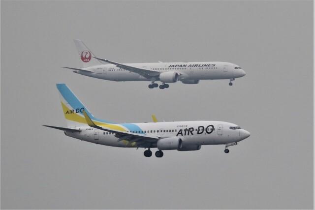 電車の運転士さんが、羽田空港で撮影したAIR DO 737-781の航空フォト(飛行機 写真・画像)