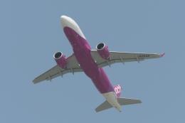 木人さんが、成田国際空港で撮影したピーチ A320-251Nの航空フォト(飛行機 写真・画像)