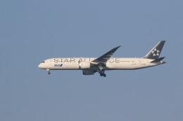 airdrugさんが、成田国際空港で撮影した全日空 787-9の航空フォト(飛行機 写真・画像)