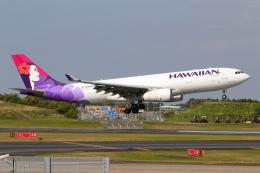 こだしさんが、成田国際空港で撮影したハワイアン航空 A330-243の航空フォト(飛行機 写真・画像)