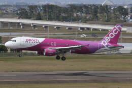 プルシアンブルーさんが、仙台空港で撮影したピーチ A320-214の航空フォト(飛行機 写真・画像)