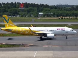 FT51ANさんが、成田国際空港で撮影したピーチ A320-214の航空フォト(飛行機 写真・画像)