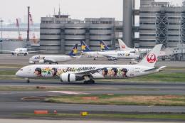 sakaki787さんが、羽田空港で撮影した日本航空 787-9の航空フォト(飛行機 写真・画像)