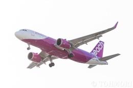遠森一郎さんが、福岡空港で撮影したピーチ A320-251Nの航空フォト(飛行機 写真・画像)