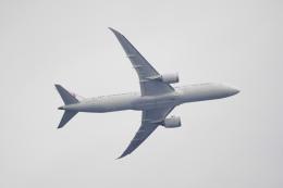 senbaさんが、羽田空港で撮影した日本航空 787-9の航空フォト(飛行機 写真・画像)