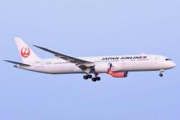 M.Tさんが、関西国際空港で撮影した日本航空 787-9の航空フォト(飛行機 写真・画像)